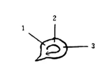 《学写隶书》点画的书写步骤和变化 名碑集字剖析